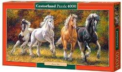 Selecta Castorland legpuzzel Geboren om te Rennen 4000 stukjes