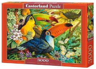 Selecta Castorland legpuzzel Interlude 3000 stukjes