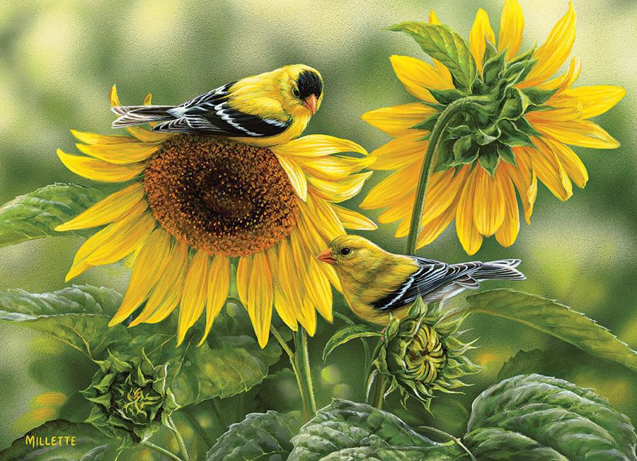 Eureka Cobble hill legpuzzel zonnebloemen met vogels 1000 stukje