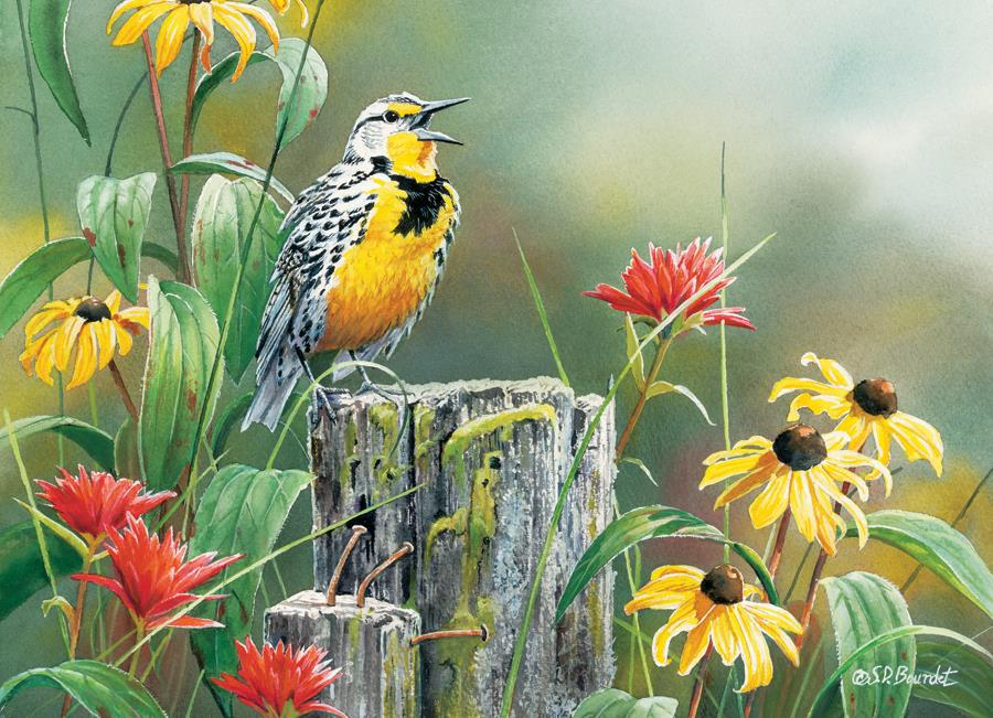 Eureka Cobble hill legpuzzel Meadowlark Morning 1000 stukjes