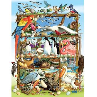 Eureka Cobble hill familie kinderpuzzel Wereld Vogels 400 stukje