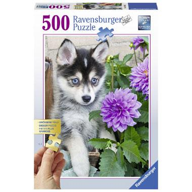 Ravensburger legpuzzel Schattige Husky 500 stukjes vanaf 9 jaar